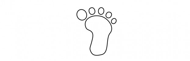 Things we take for granted: Toes